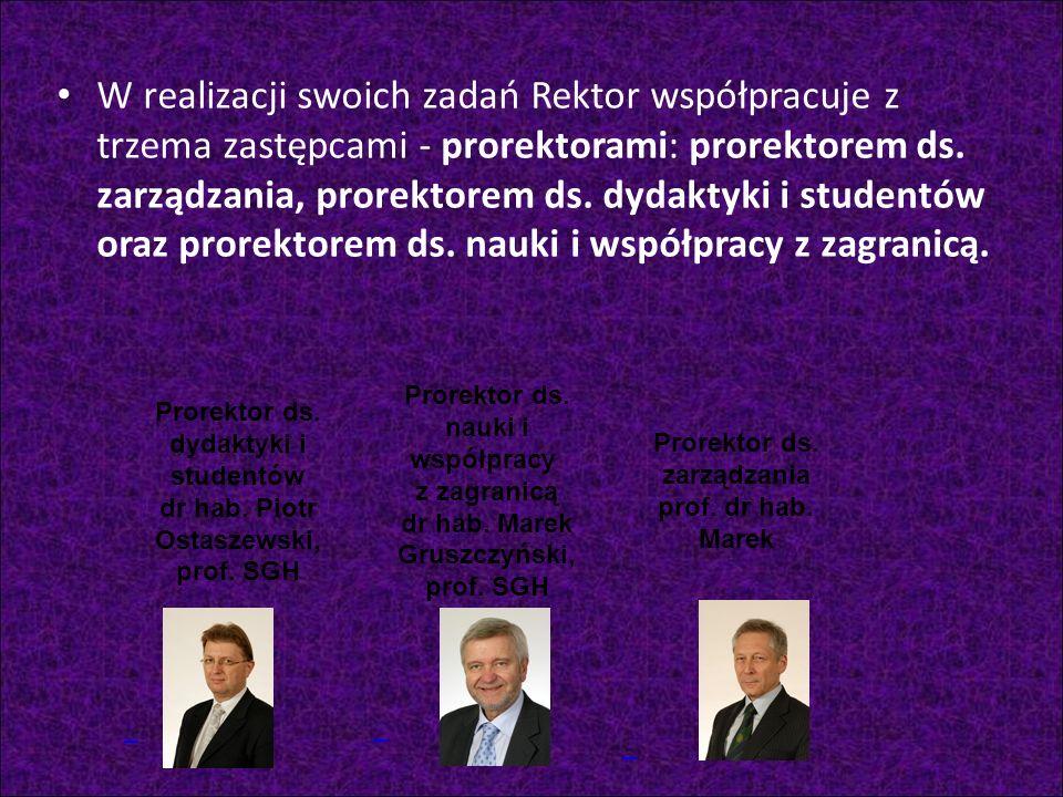 Prorektor ds. zarządzania prof. dr hab. Marek