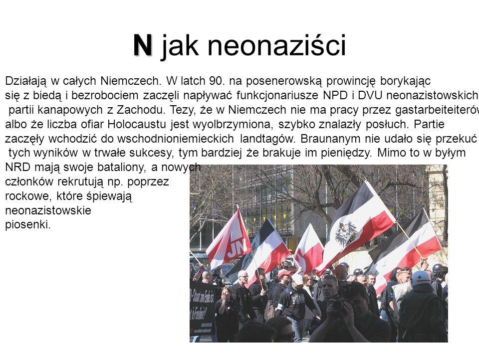 N jak neonaziści Działają w całych Niemczech. W latch 90. na posenerowską prowincję borykając.