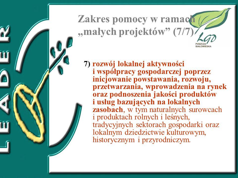 """Zakres pomocy w ramach """"małych projektów (7/7)"""