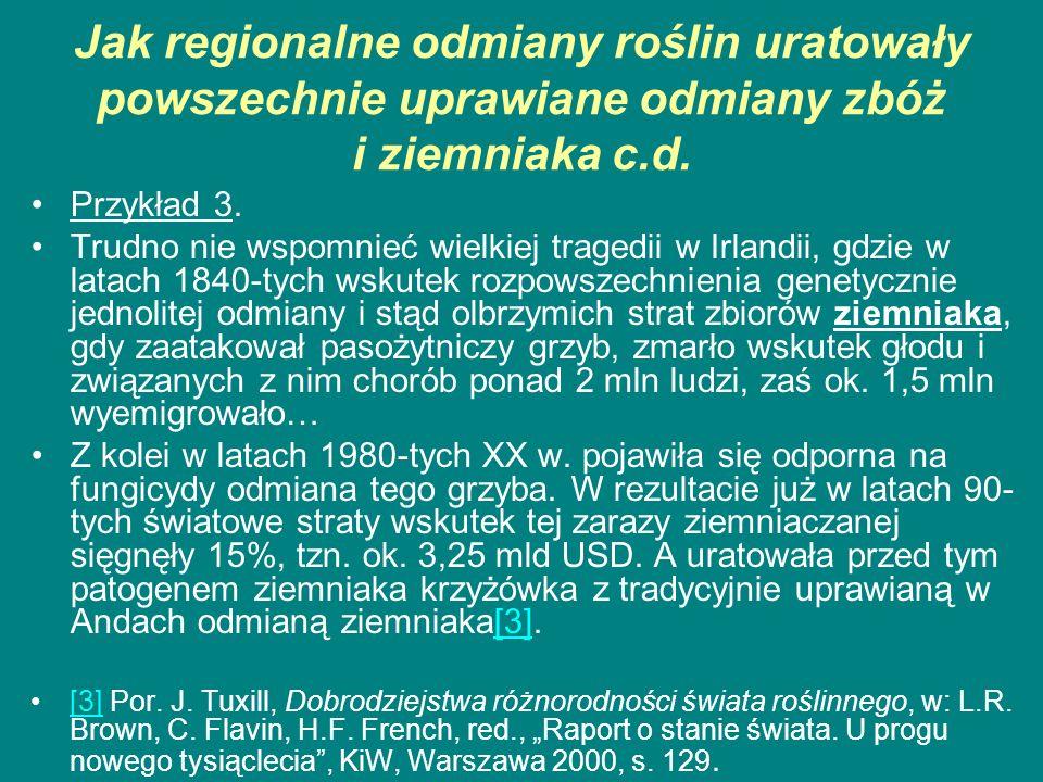 Jak regionalne odmiany roślin uratowały powszechnie uprawiane odmiany zbóż i ziemniaka c.d.