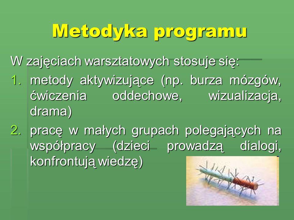 Metodyka programu W zajęciach warsztatowych stosuje się: