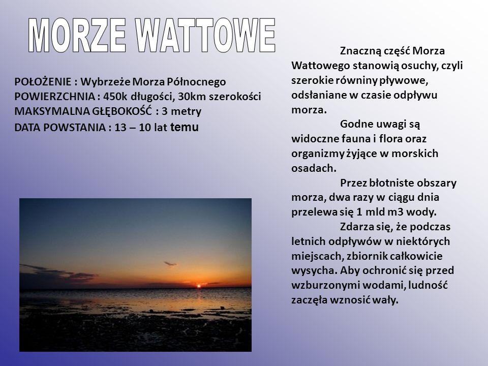 MORZE WATTOWE Znaczną część Morza Wattowego stanowią osuchy, czyli szerokie równiny pływowe, odsłaniane w czasie odpływu morza.