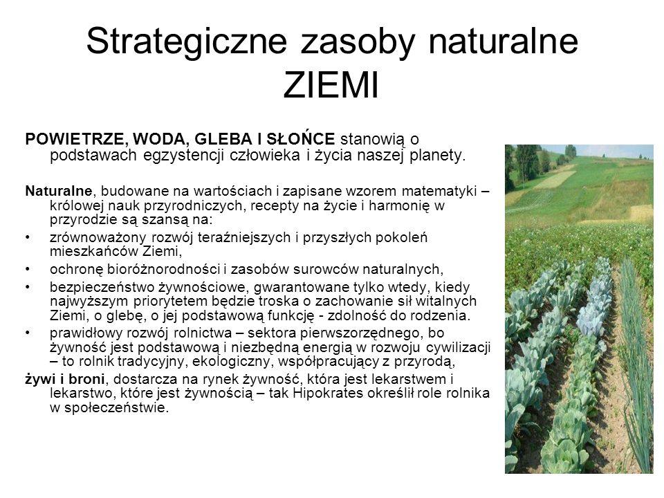 Strategiczne zasoby naturalne ZIEMI