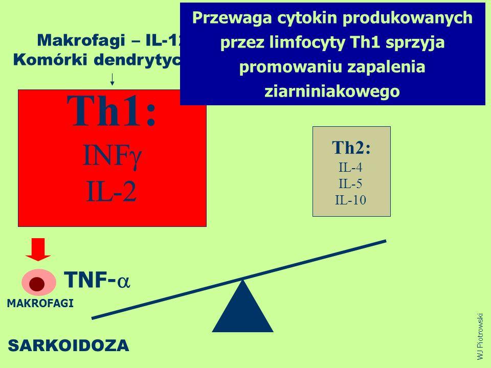 Th1: INF IL-2 TNF-a Th2: Przewaga cytokin produkowanych