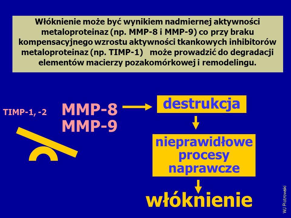 włóknienie MMP-8 MMP-9 destrukcja nieprawidłowe procesy naprawcze