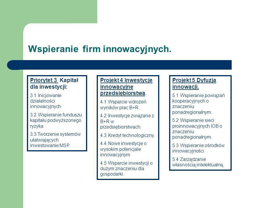 Wspieranie firm innowacyjnych.