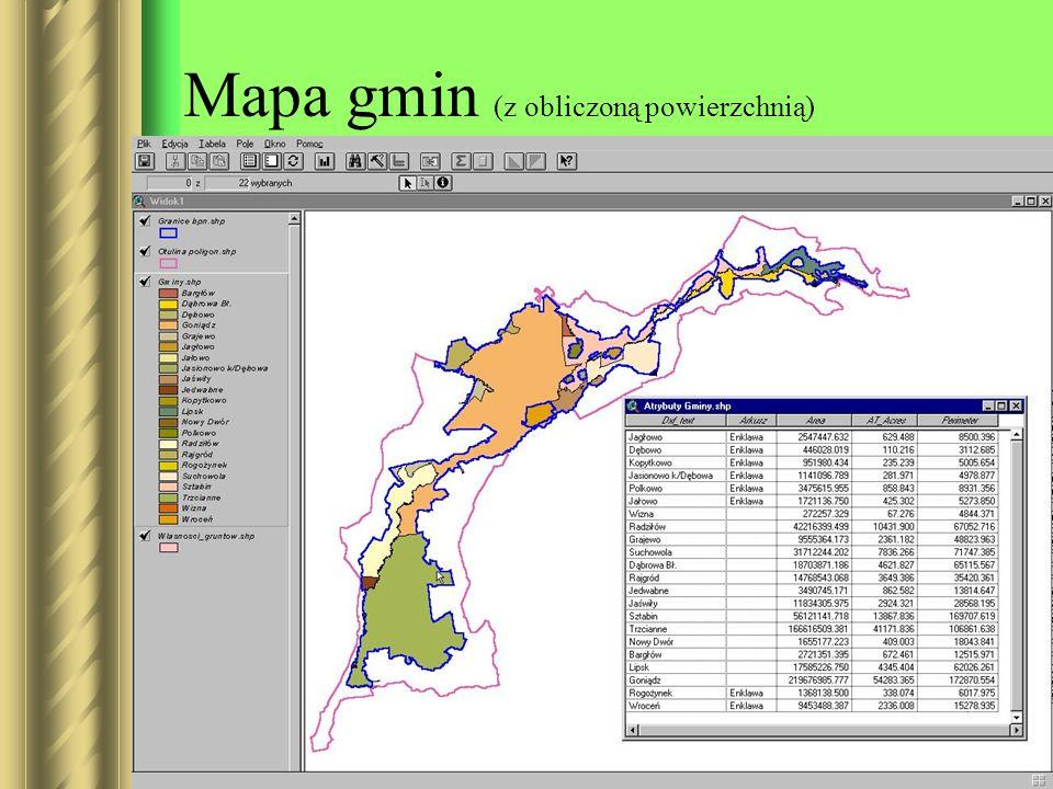Mapa gmin (z obliczoną powierzchnią)