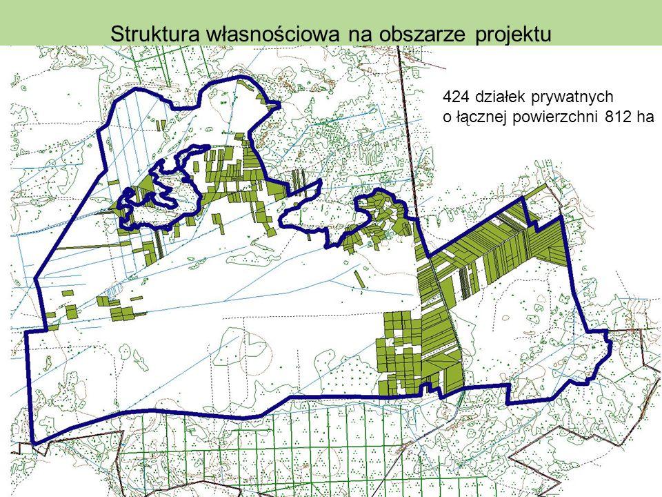Struktura własnościowa na obszarze projektu