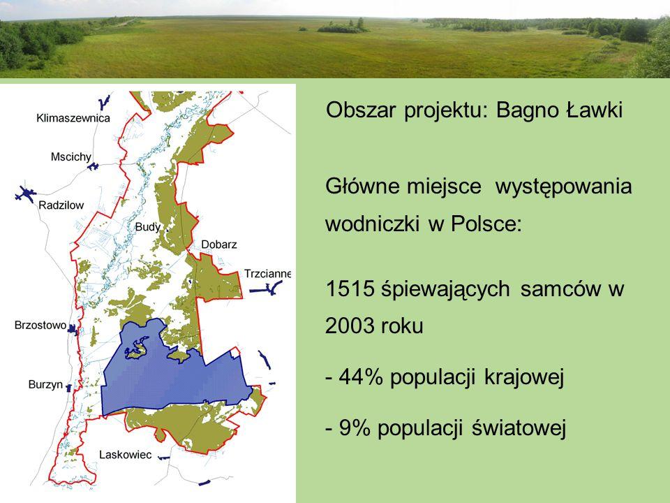Obszar projektu: Bagno Ławki