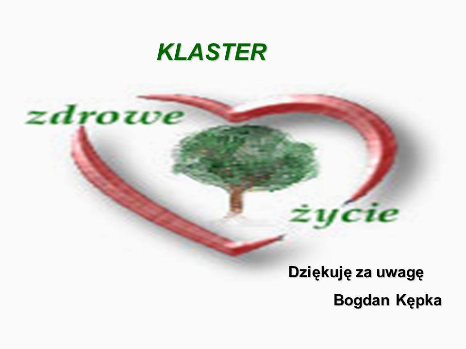 KLASTER Dziękuję za uwagę Bogdan Kępka