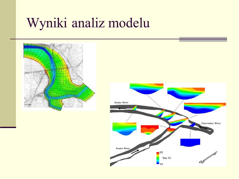Wyniki analiz modelu