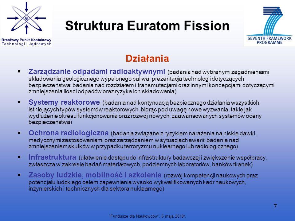 Struktura Euratom Fission