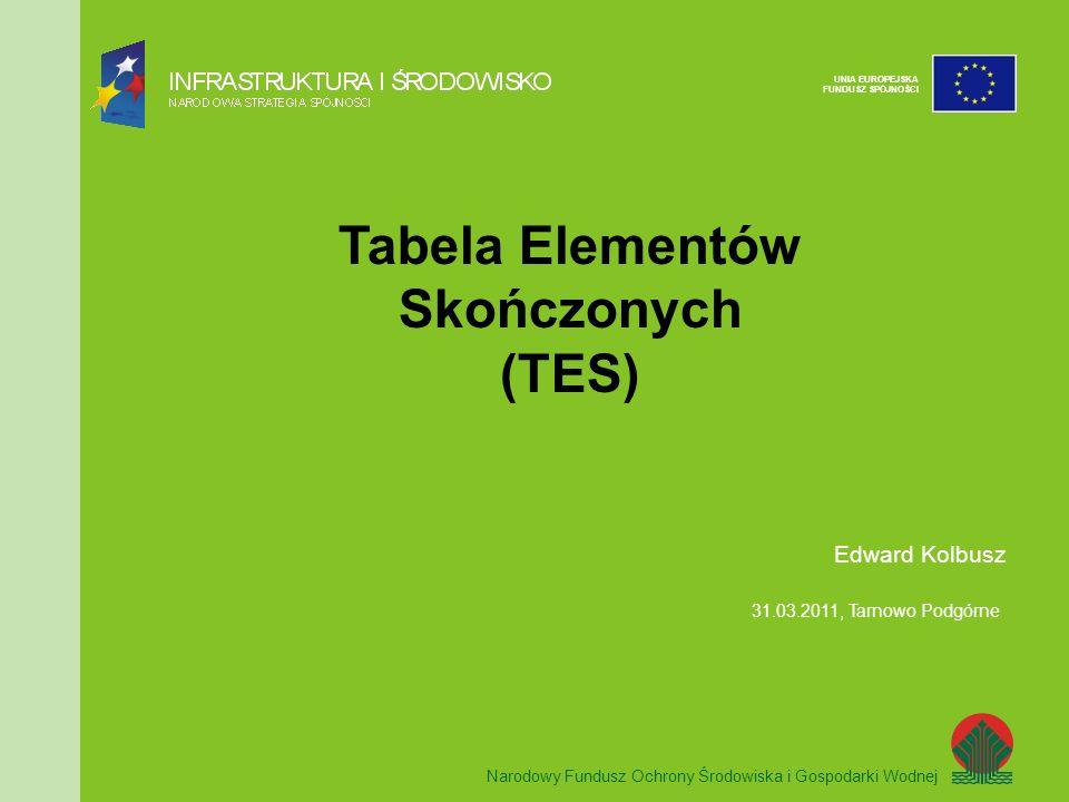 Tabela Elementów Skończonych (TES)