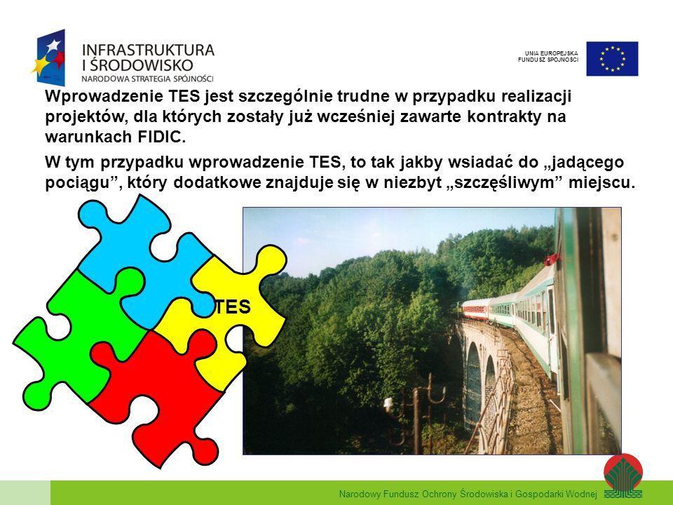 Wprowadzenie TES jest szczególnie trudne w przypadku realizacji projektów, dla których zostały już wcześniej zawarte kontrakty na warunkach FIDIC.
