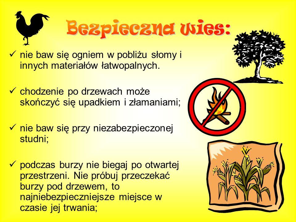 Bezpieczna wies: nie baw się ogniem w pobliżu słomy i innych materiałów łatwopalnych. chodzenie po drzewach może skończyć się upadkiem i złamaniami;