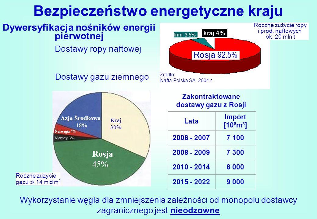 Dywersyfikacja nośników energii pierwotnej