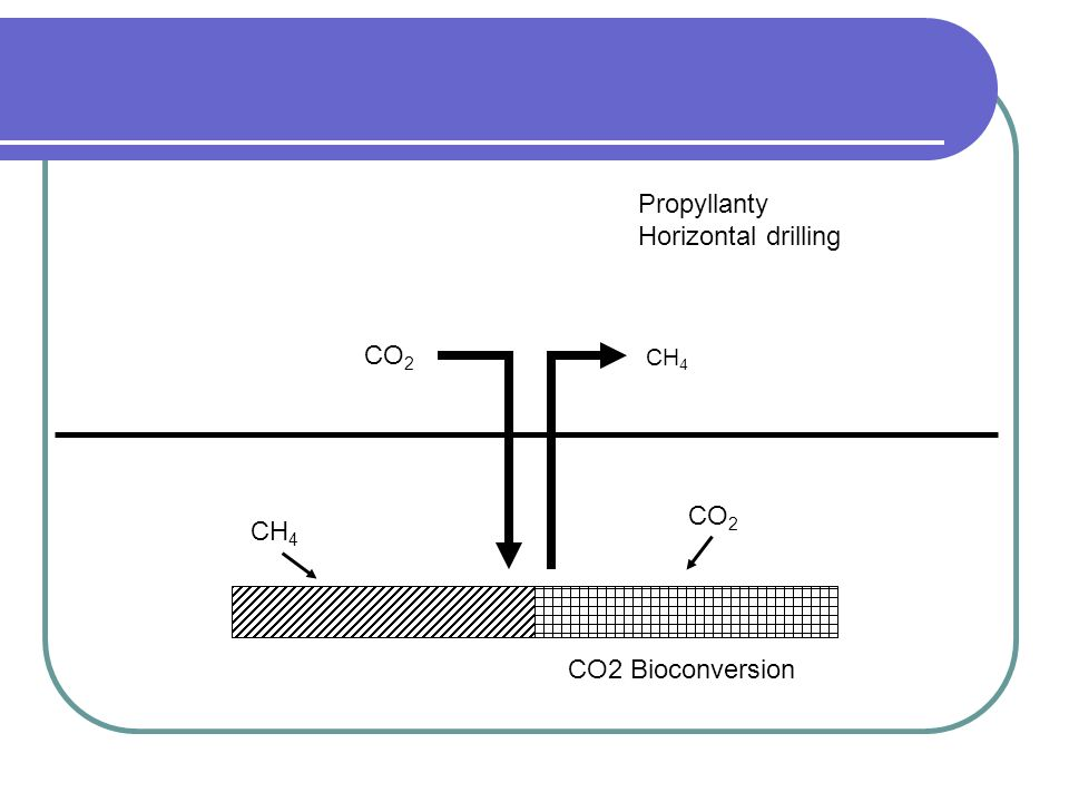 Propyllanty Horizontal drilling CO2 CH4 CO2 CH4 CO2 Bioconversion