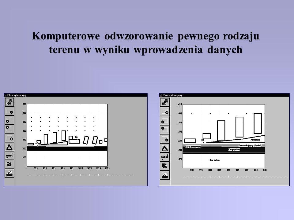 Komputerowe odwzorowanie pewnego rodzaju terenu w wyniku wprowadzenia danych