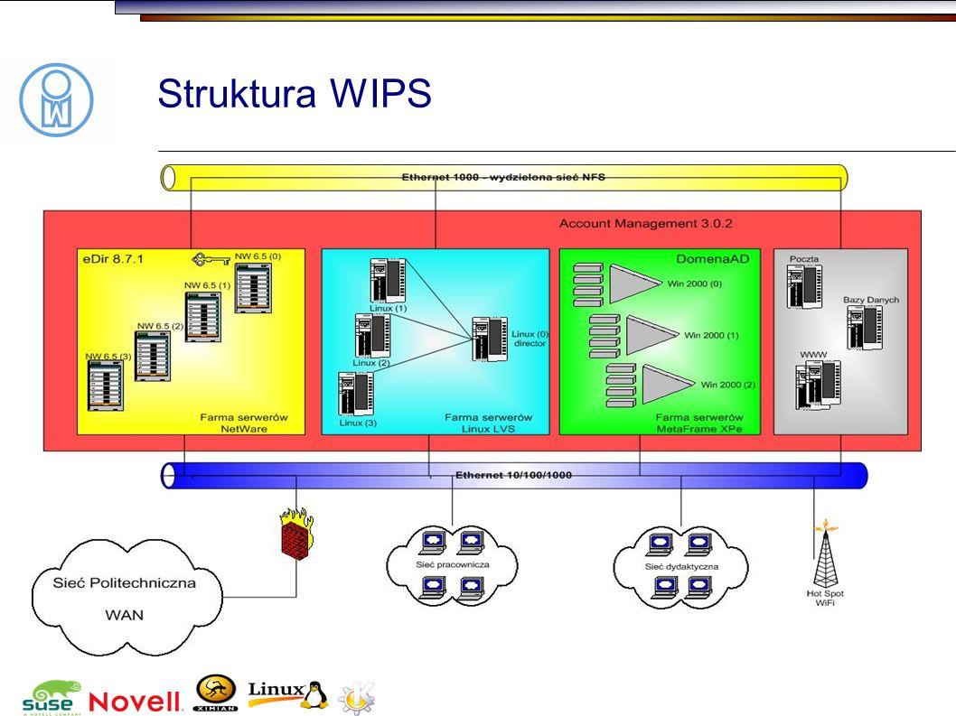 Struktura WIPS