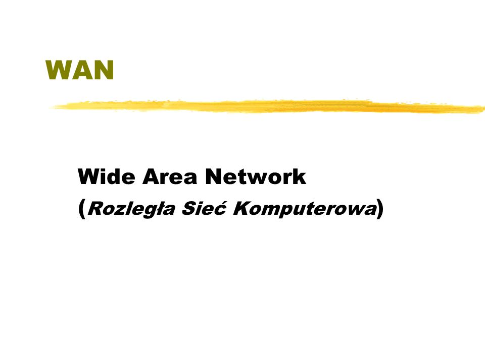 Wide Area Network (Rozległa Sieć Komputerowa)