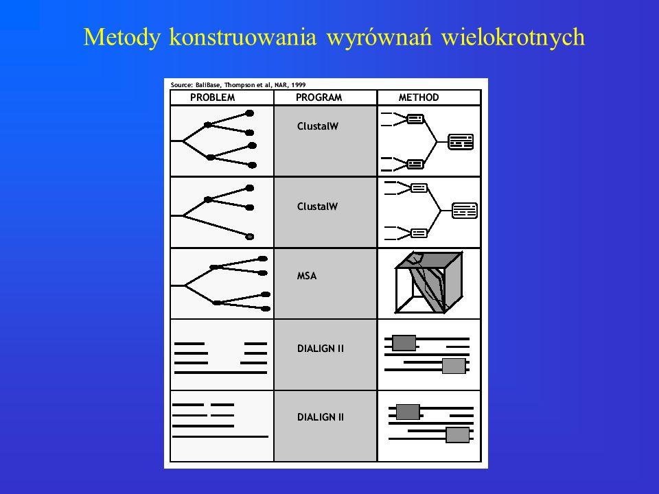 Metody konstruowania wyrównań wielokrotnych