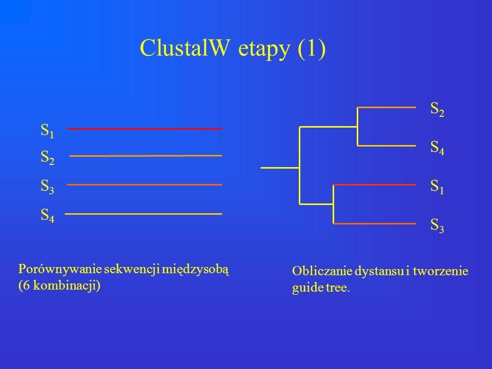 ClustalW etapy (1) S2 S1 S4 S2 S3 S1 S4 S3