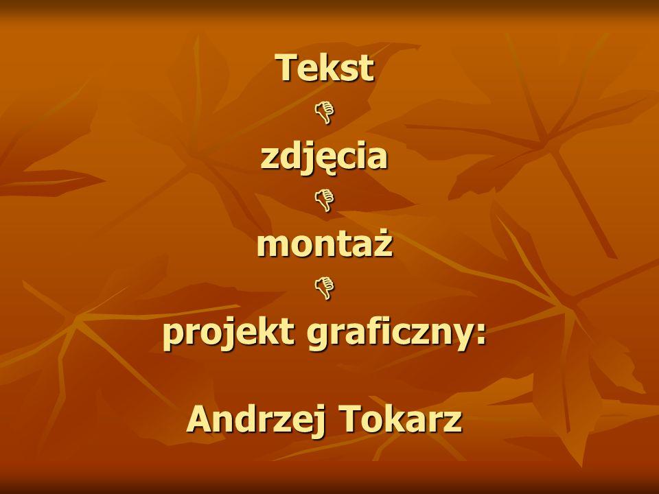 Tekst D zdjęcia D montaż D projekt graficzny: Andrzej Tokarz