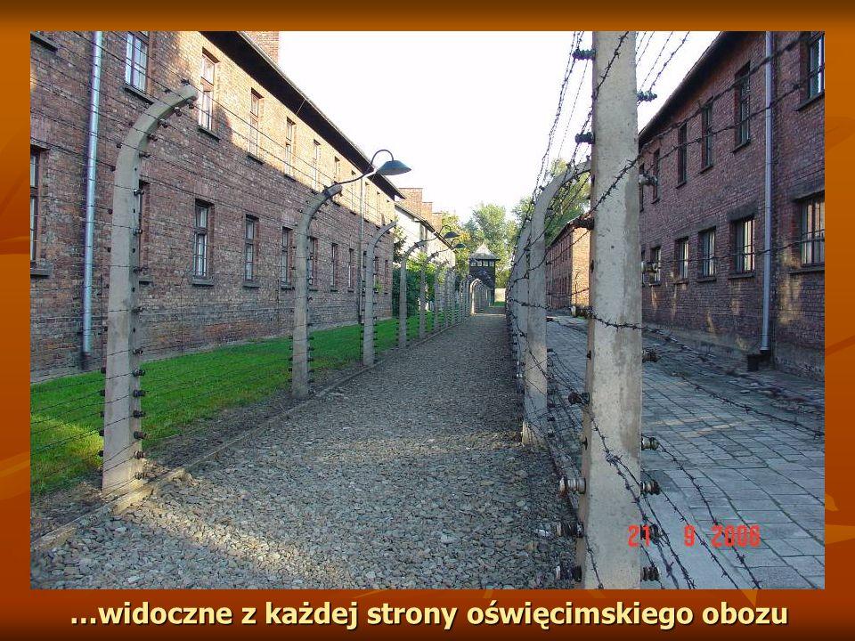 …widoczne z każdej strony oświęcimskiego obozu