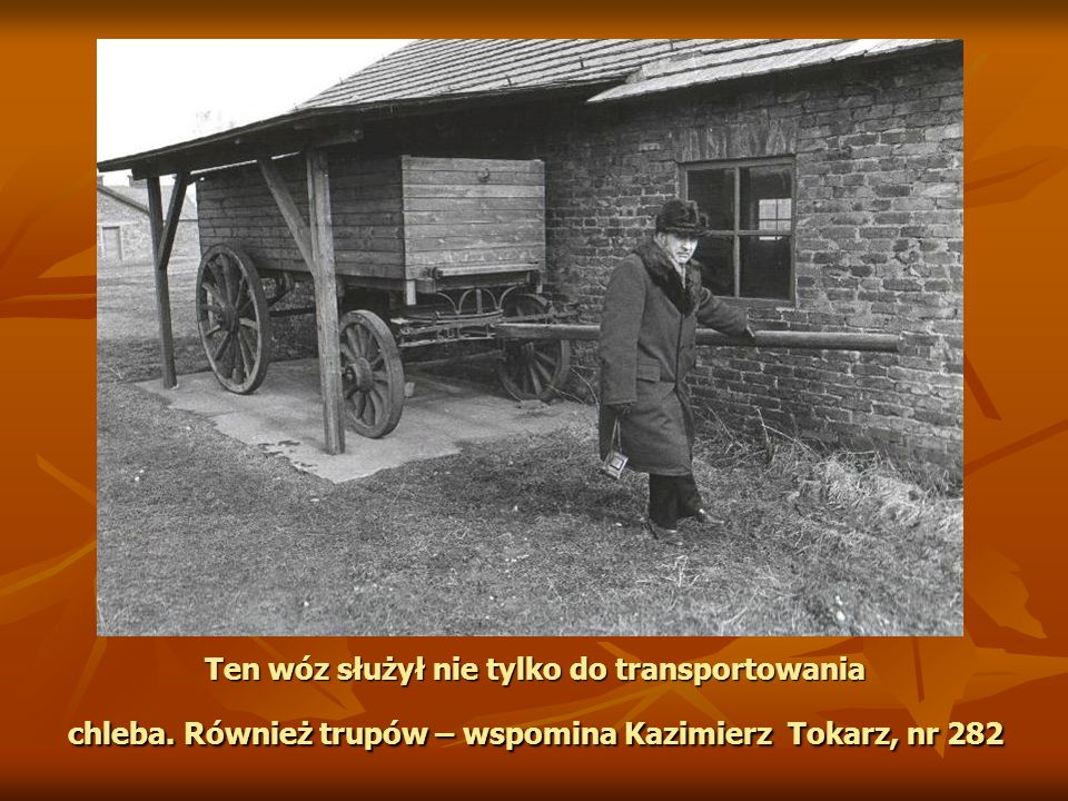 Ten wóz służył nie tylko do transportowania chleba