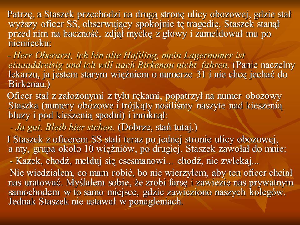 Patrzę, a Staszek przechodzi na drugą stronę ulicy obozowej, gdzie stał wyższy oficer SS, obserwujący spokojnie tę tragedię. Staszek stanął przed nim na baczność, zdjął myckę z głowy i zameldował mu po niemiecku: