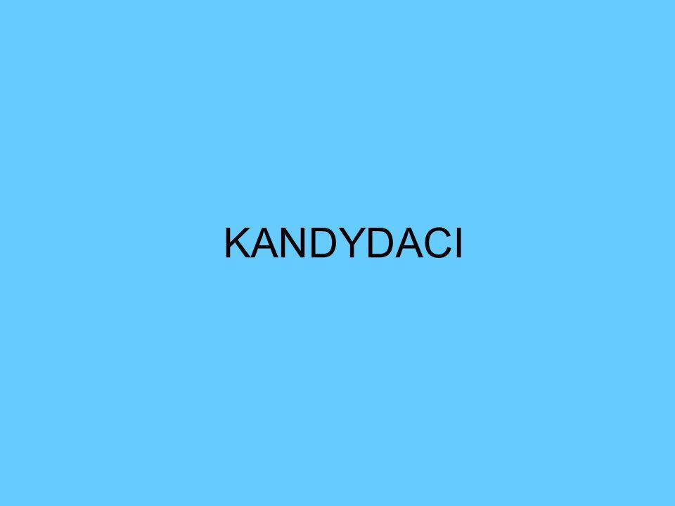 KANDYDACI