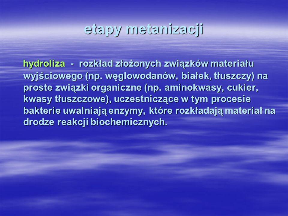 etapy metanizacji