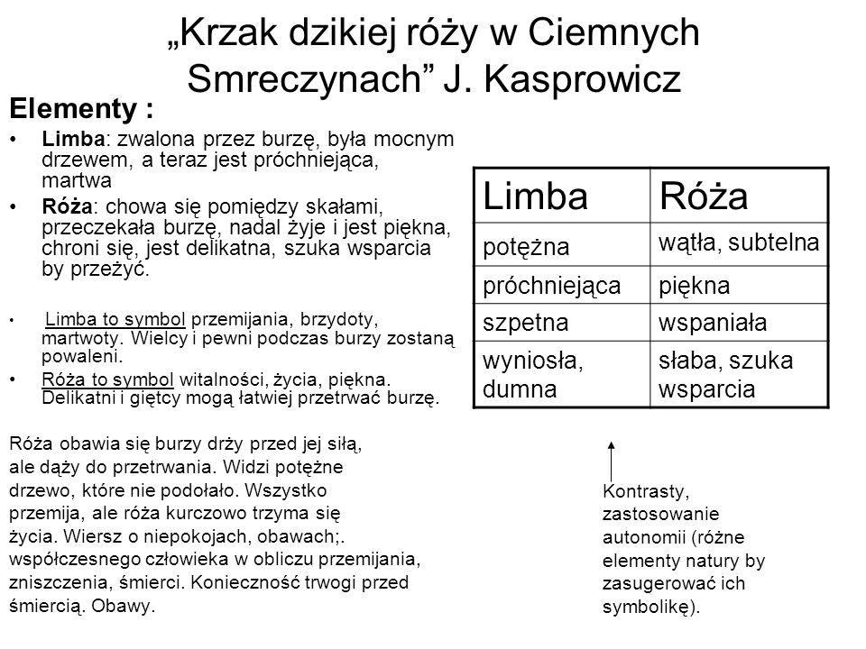 """""""Krzak dzikiej róży w Ciemnych Smreczynach J. Kasprowicz"""