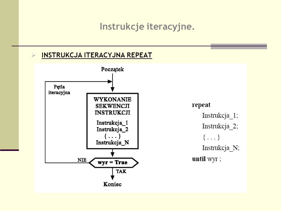 Instrukcje iteracyjne.