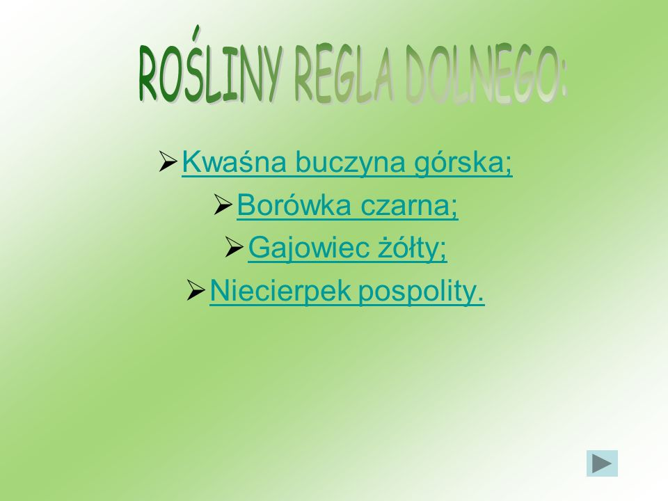 ROŚLINY REGLA DOLNEGO: