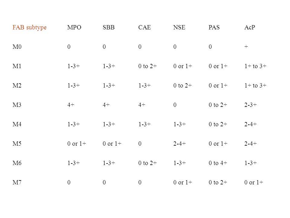 FAB subtypeMPO. SBB. CAE. NSE. PAS. AcP. M0. + M1. 1-3+ 0 to 2+ 0 or 1+ 1+ to 3+ M2. M3. 4+ 2-3+ M4.