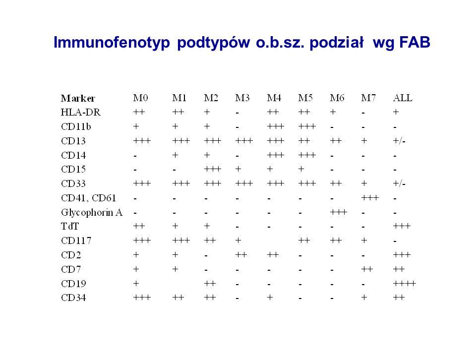 Immunofenotyp podtypów o.b.sz. podział wg FAB