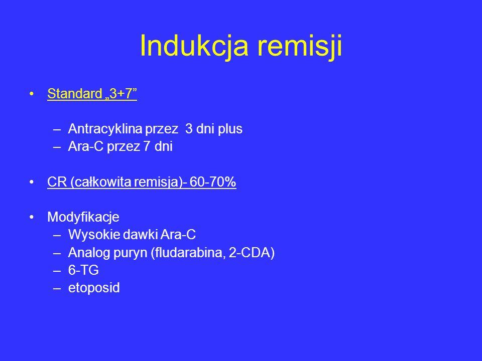 """Indukcja remisji Standard """"3+7 Antracyklina przez 3 dni plus"""