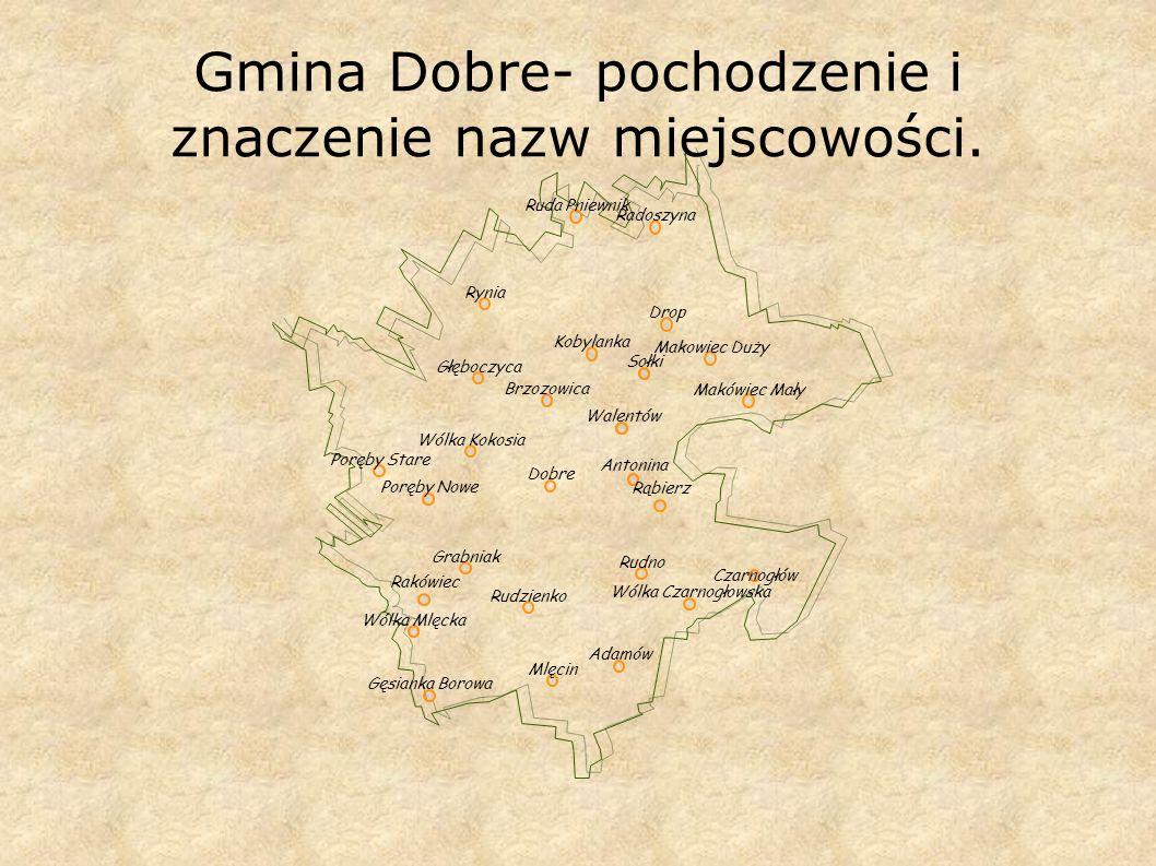 Gmina Dobre- pochodzenie i znaczenie nazw miejscowości.