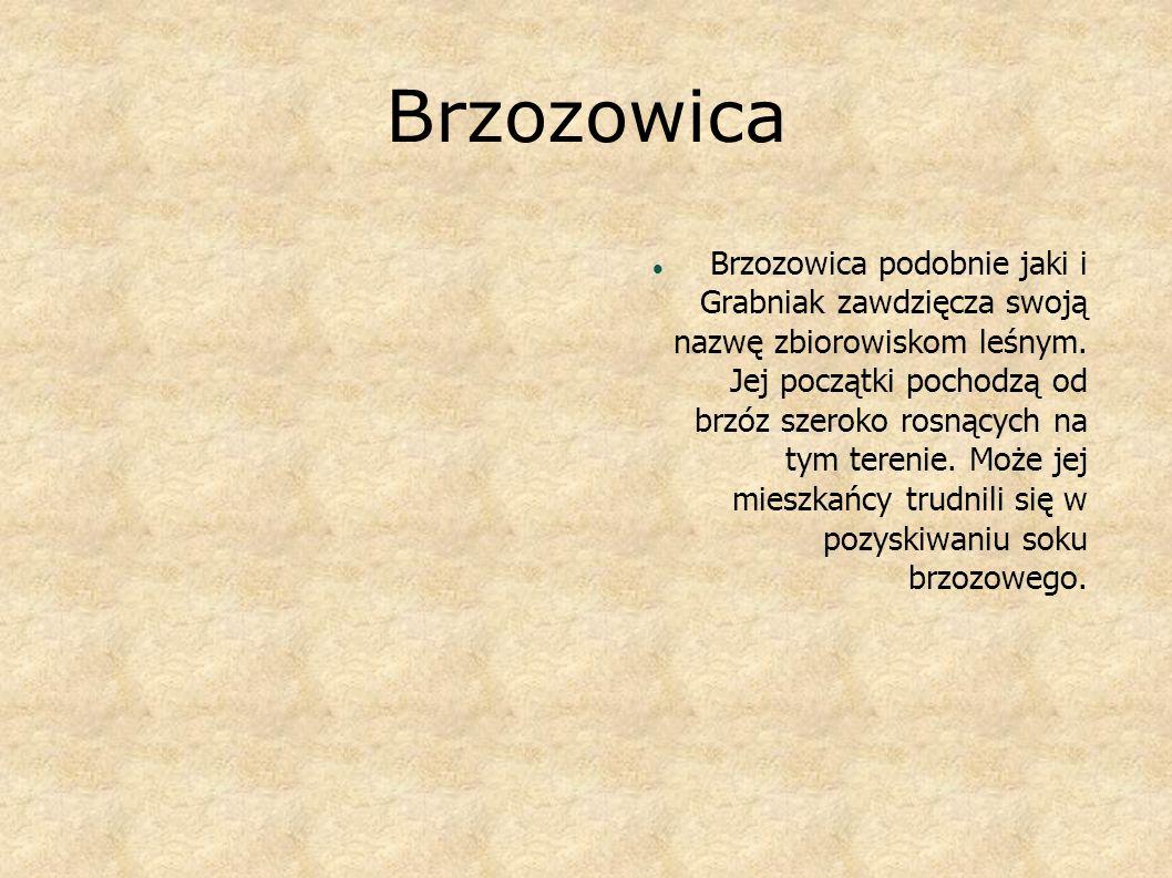 Brzozowica