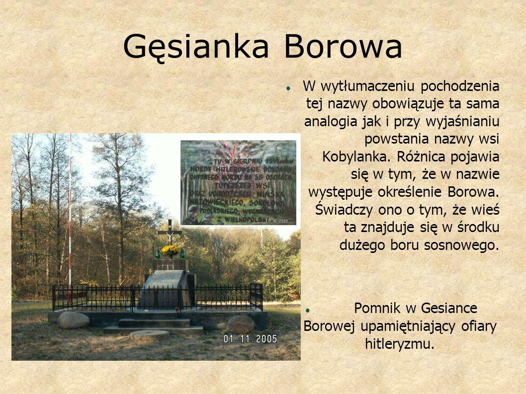 Pomnik w Gesiance Borowej upamiętniający ofiary hitleryzmu.