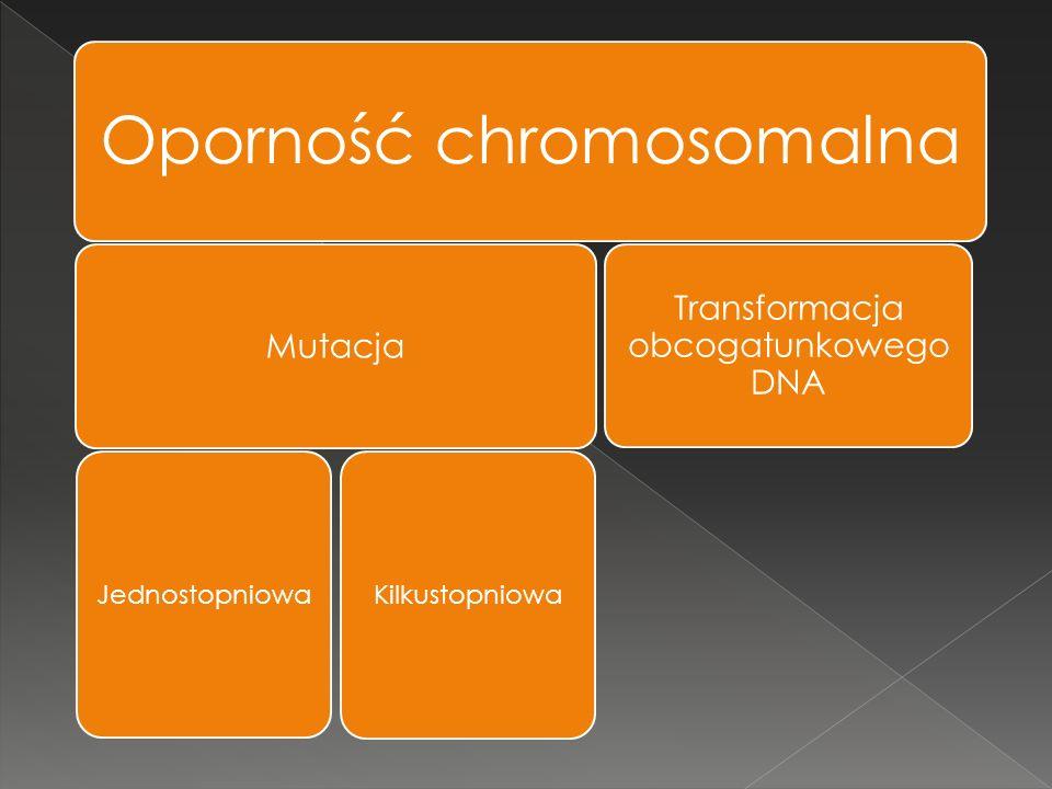 Oporność chromosomalna