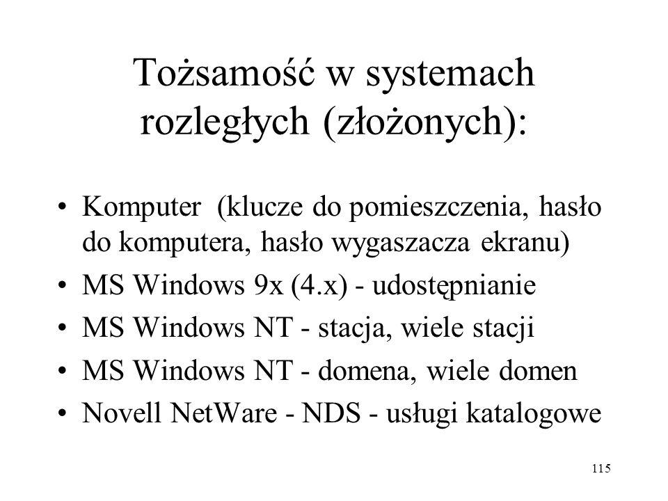 Tożsamość w systemach rozległych (złożonych):