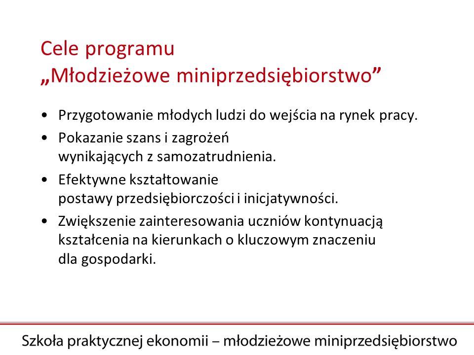 """Cele programu """"Młodzieżowe miniprzedsiębiorstwo"""