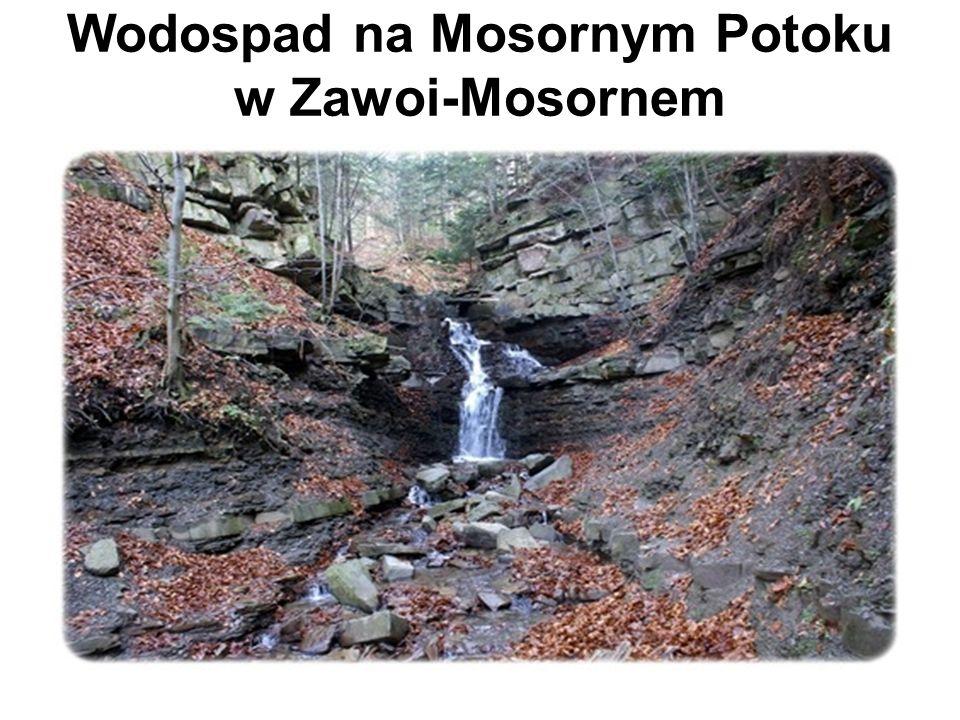 Wodospad na Mosornym Potoku w Zawoi-Mosornem