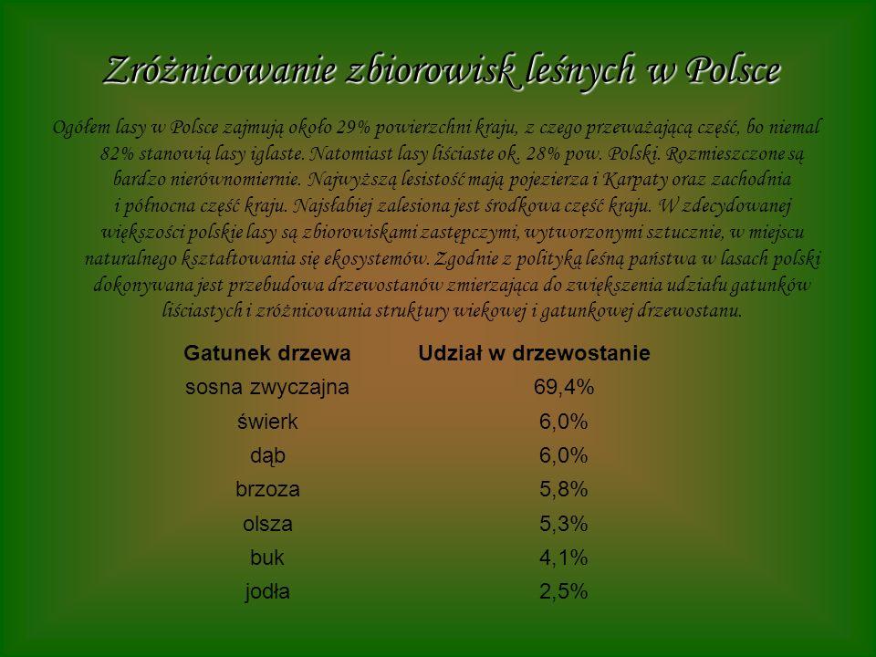 Zróżnicowanie zbiorowisk leśnych w Polsce