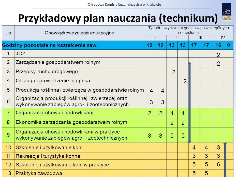 Przykładowy plan nauczania (technikum)