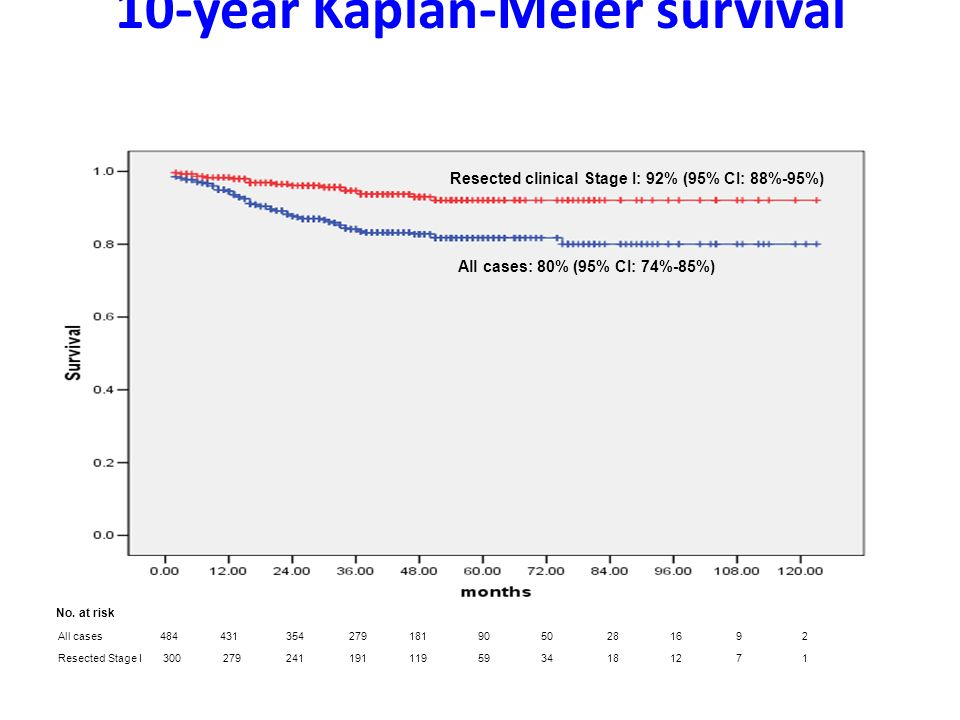 10-year Kaplan-Meier survival Henschke i wsp. NEJM 2006