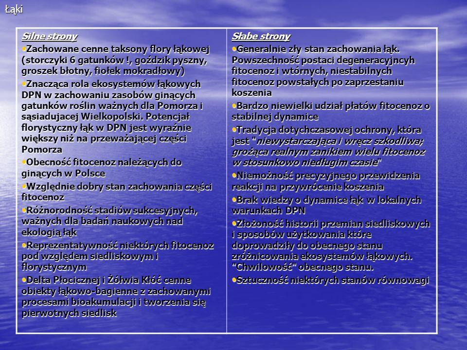 Łąki Silne strony. Zachowane cenne taksony flory łąkowej (storczyki 6 gatunków !, goździk pyszny, groszek błotny, fiołek mokradłowy)