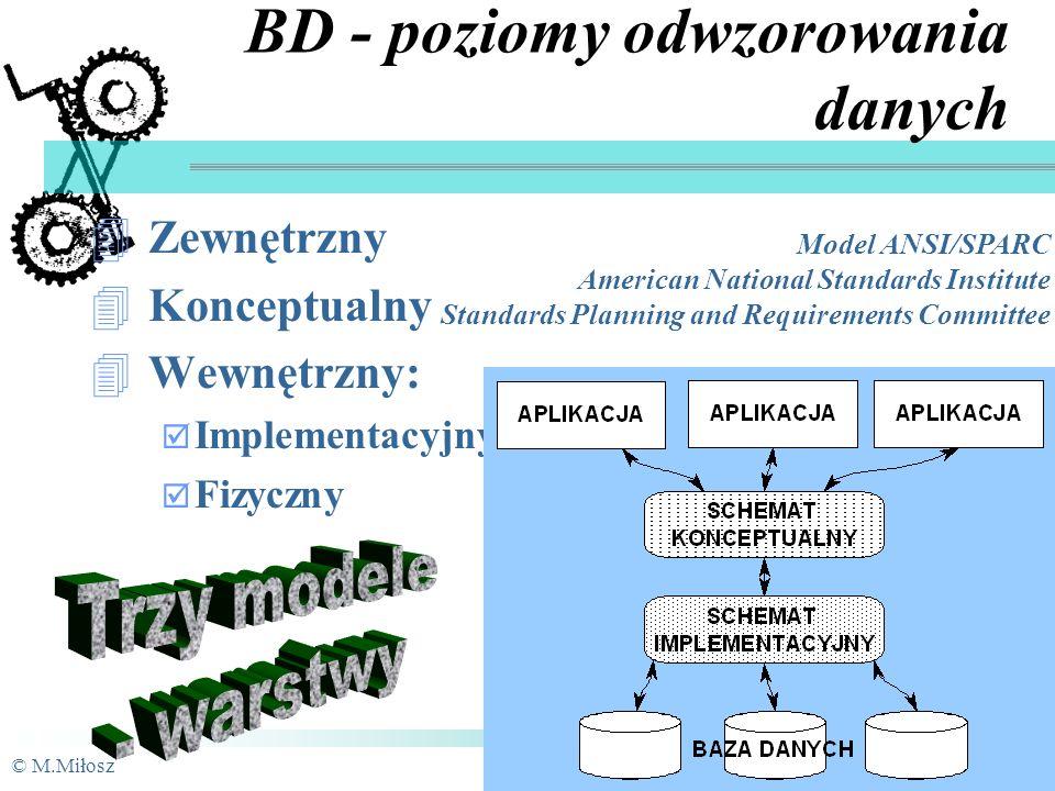 BD - poziomy odwzorowania danych